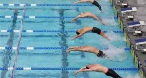مدرسة سباحة نادى الزمالك