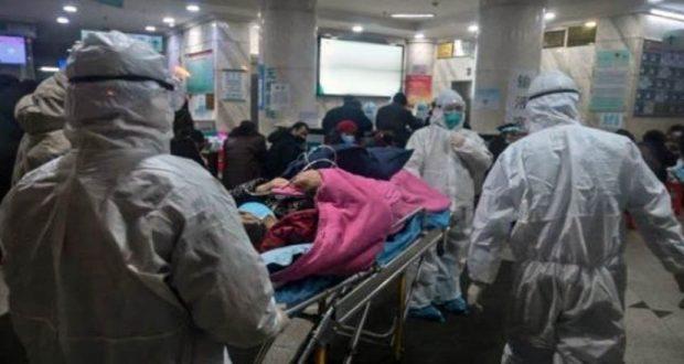 أخبار فيروس كورونا في مصر
