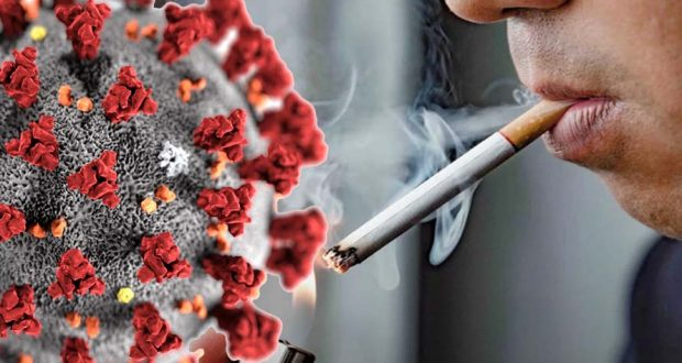 تأثير التدخين والنيكوتين علي فيروس كورونا المستجد