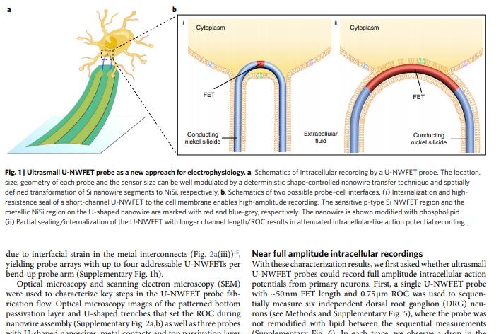 جزء من بحث تشارلز ليبر صانع فيروس كورونا