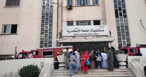 مستشفيات جامعة الأسكندرية