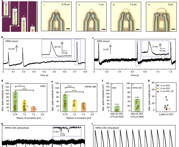موجات النانو التكنولوجي التي تعرض لها دم الخفاش