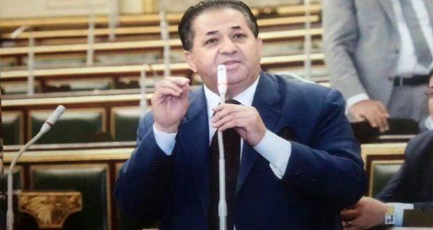 النائب عيد هيكل عضو مجلس النواب عن دائرة المرج